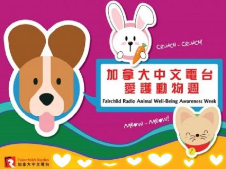 Fairchild Radio Animal Well-being Awareness Week 加拿大中文電台愛護動物週